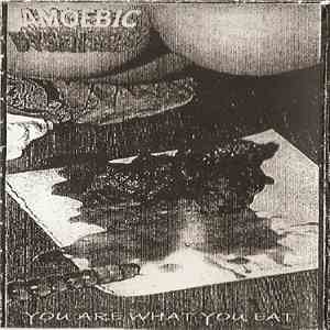 Amoebic Dysentery / Feasting Blood - You Are What You Eat / ...Of The Stench After Life flac album