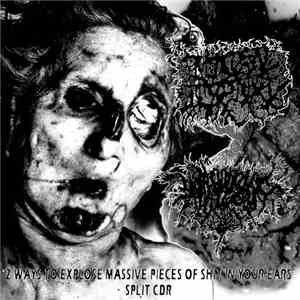 Pathological Torture / Vomithanatophorichthyosis - 2 Ways to Explose Massive Pieces Of Shit In Your Ears flac album