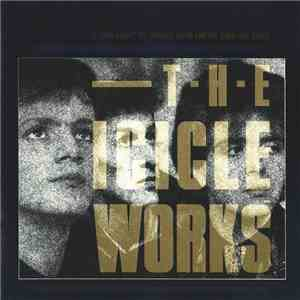 The Icicle Works - If You Want To Defeat Your Enemy Sing His Song flac album