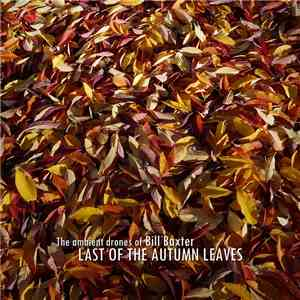 The Ambient Drones Of Bill Baxter - Last Of The Autumn Leaves flac album