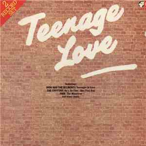 Various - Teenage Love flac album