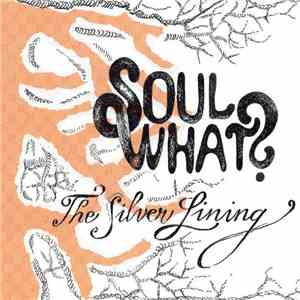 Soul What?  - The Silver Lining flac album